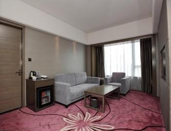 广州丽柏国际酒店高级套房-客厅